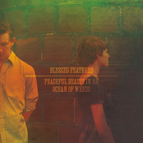 Blessed Feathers - Peaceful Beasts in an Ocean of Weeds